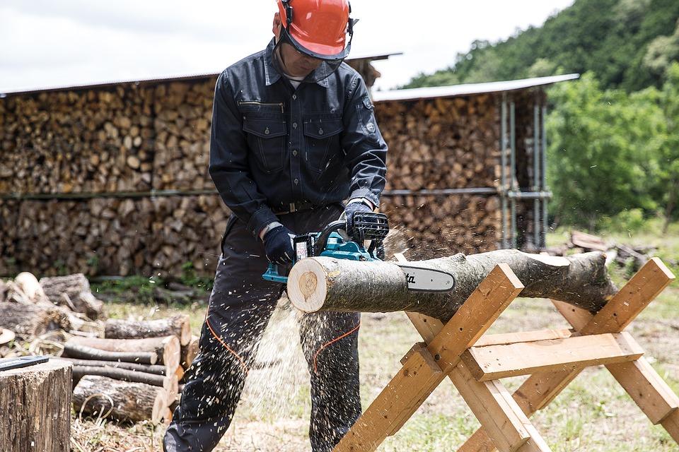 Tronçonneuse électrique: votre meilleur allié pour couper le bois