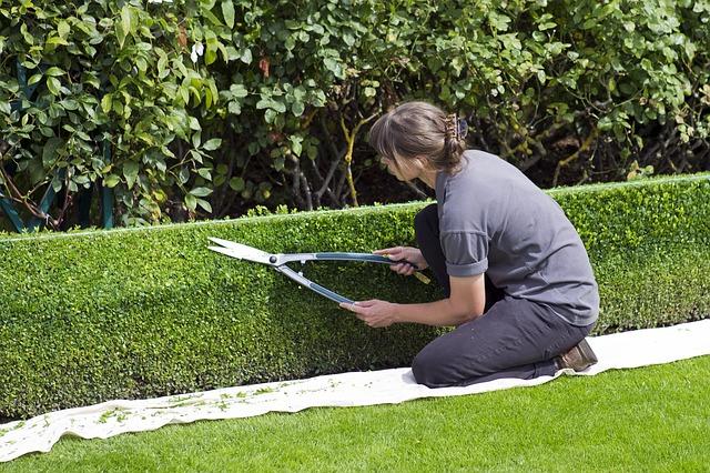 Comment trouver un bon jardinier paysagiste?